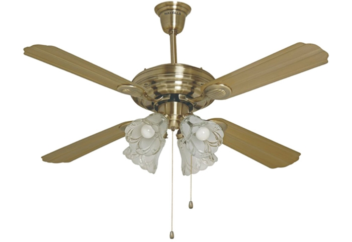 Elegant These decorative LED lights are to be fixed below the centre of the fan giving the feel of a grand and majestic chandelier Review - Inspirational 5 light ceiling fan Top Design